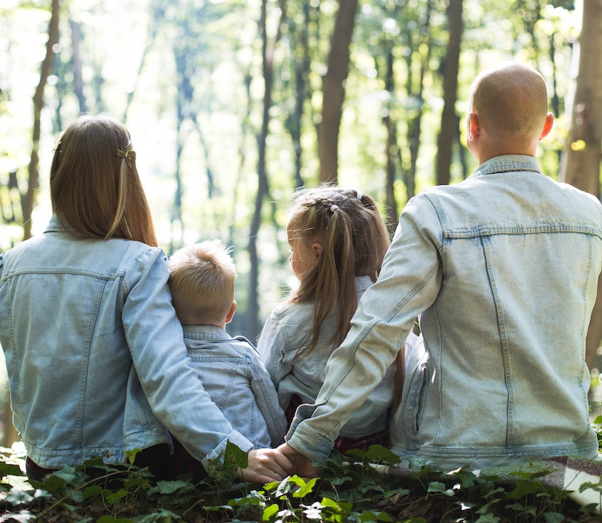 family-in-the-woods-what-are-required-minimum-distributions